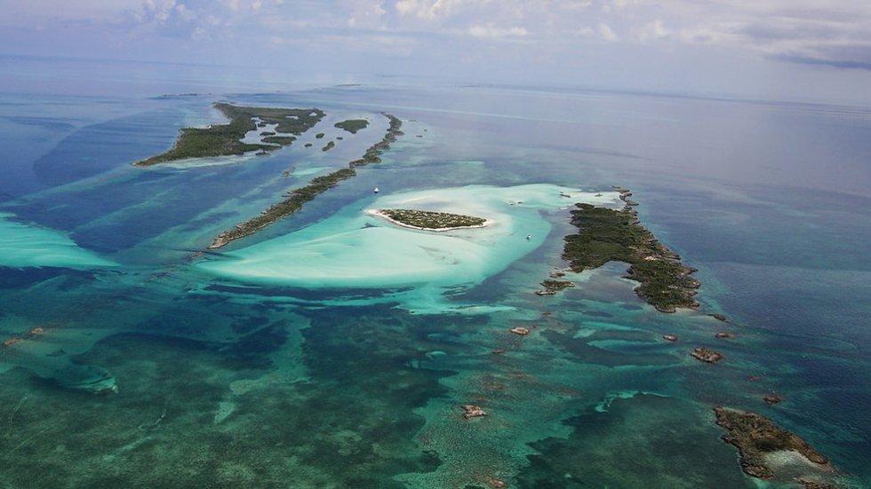 Las islas de Bahamas son un destino soñado. Con sus playas perfectas, sus aguas idílicas y sus cerdos nadadores.
