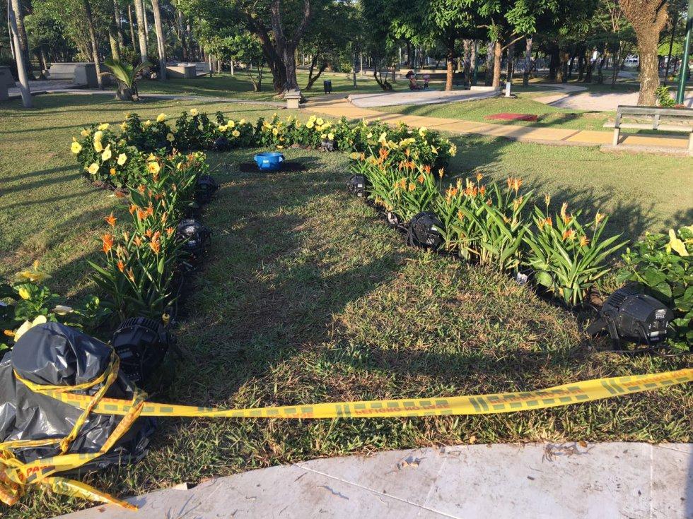 Francisco sembrará un árbol de guayacán en el Parque.