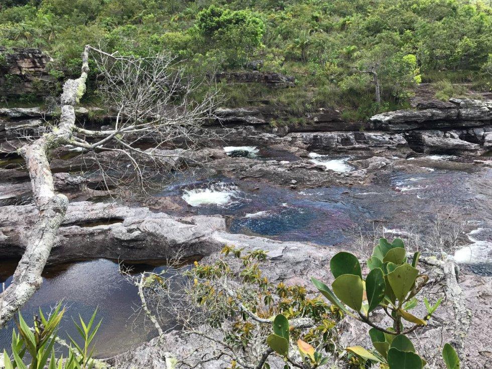 Caño Cristales es también conocido como 'el río de los siete colores'.