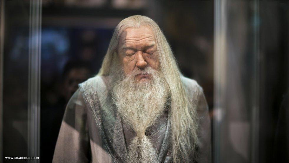 El profesor Albus Dumbledore, es el director del Colegio Hogwarts de Magia y Hechicería.