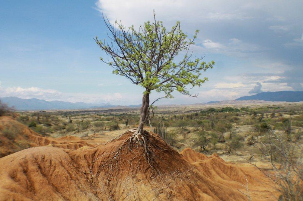 Desierto de la Tatacoa - Huila - María Monroy