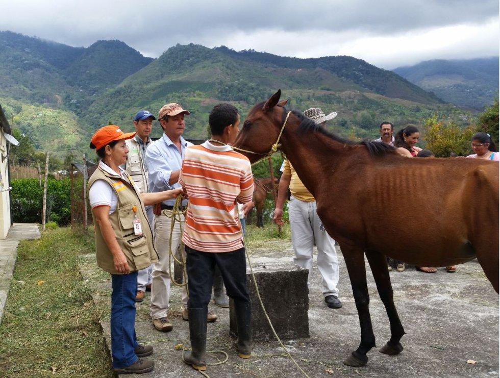 Este corregimiento de Andalucía capacita a sus habitantes en reutilización de residuos, siembra de árboles, salud animal y manejo y control de incendios.