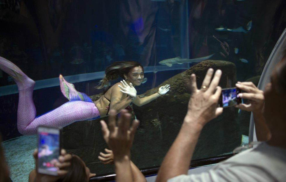 Esta sirena rubia y menuda se sumerge conteniendo la respiración por un par de minutos, contando más de veinte inmersiones por exhibición.