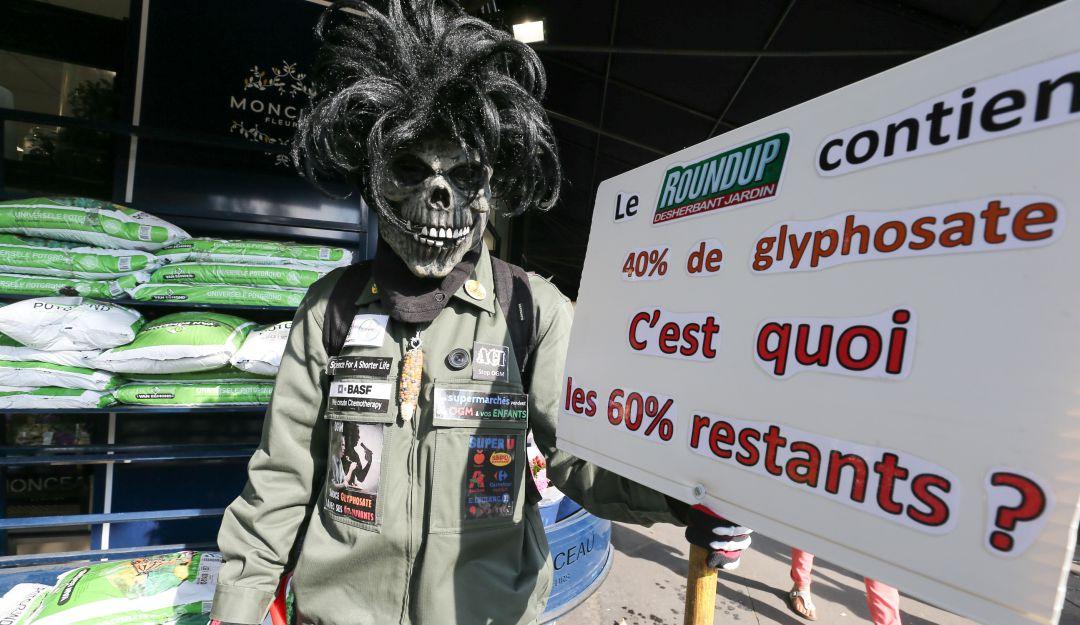 Uso glifosato: Viñedos franceses se lanzan en guerra contra