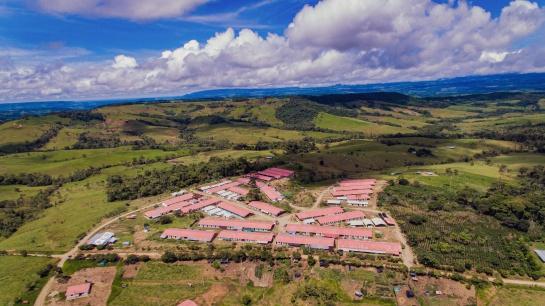 Excombatientes en Colombia: La vida de los excombatientes después de la guerra