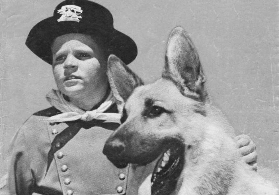 'Rin Tin Tin' el primer perro real que aparecía en la televisión (1954)