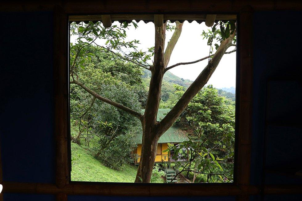 Soñarte es una reserva natural con una propuesta turística variada: [En fotos] Soñarte, el proyecto de turismo sostenible