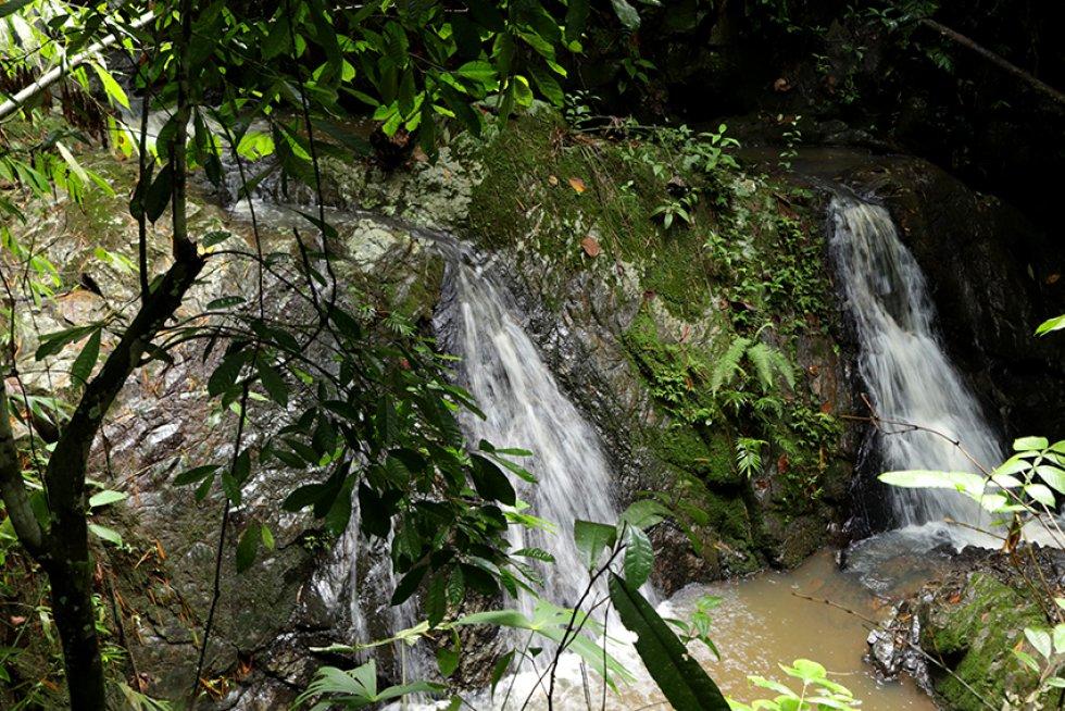 Habitantes de La Virginia desarrollan proyecto de desarrollo para la región: [En fotos] Habitantes de La Virgina buscan aprovechar potencial de su río