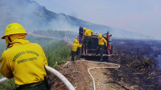 Así previenen los incendios en Chinchiná, Caldas: Así previenen los incendios en Chinchiná, Caldas