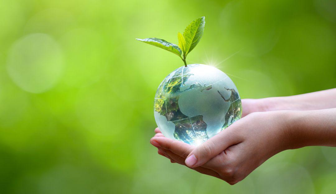Día de la Tierra: Día mundial de la Tierra, ¿por qué se celebra?   Ecología    Caracol Radio