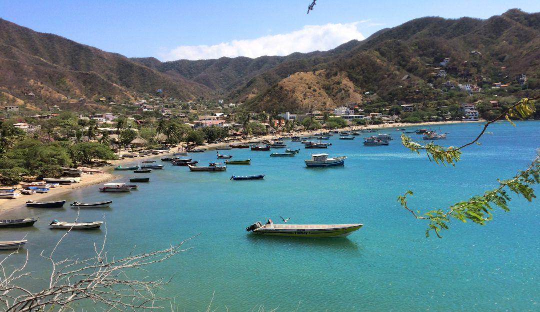 Taganga, pescadores, coronavirus: Un festival del pescado por internet proponen en Taganga | Al Campo | Caracol Radio