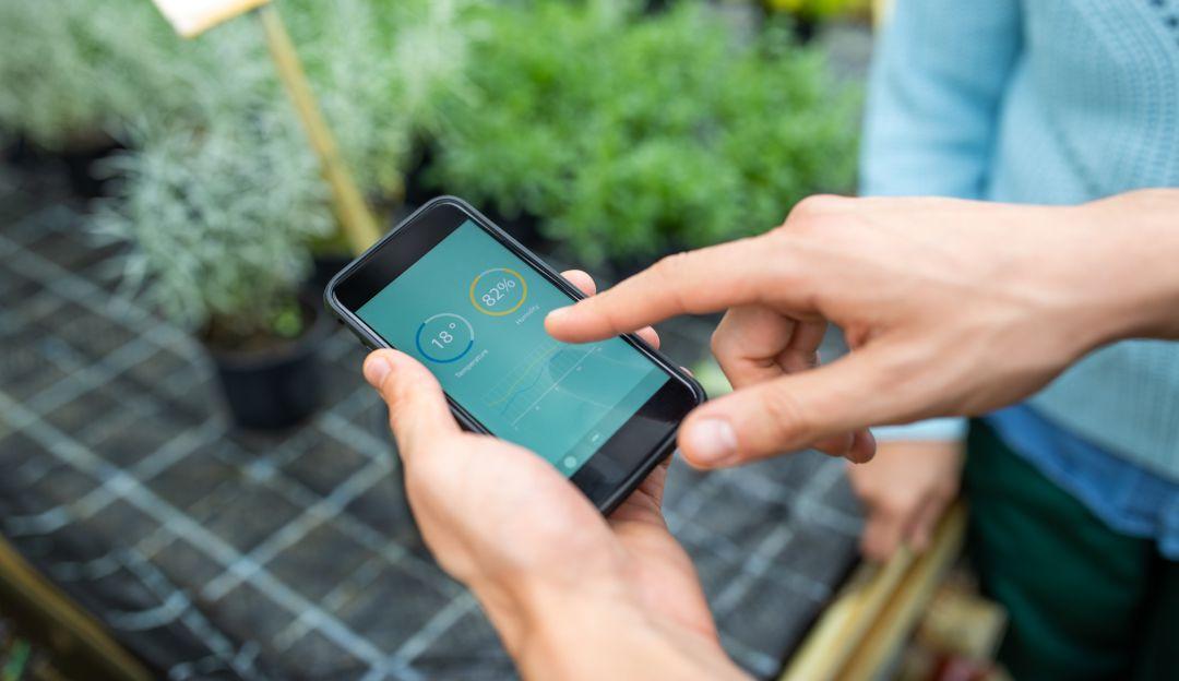 Google Aplicaciones: Conozca las 'apps' que Google eliminó porque le hacen daño a su celular