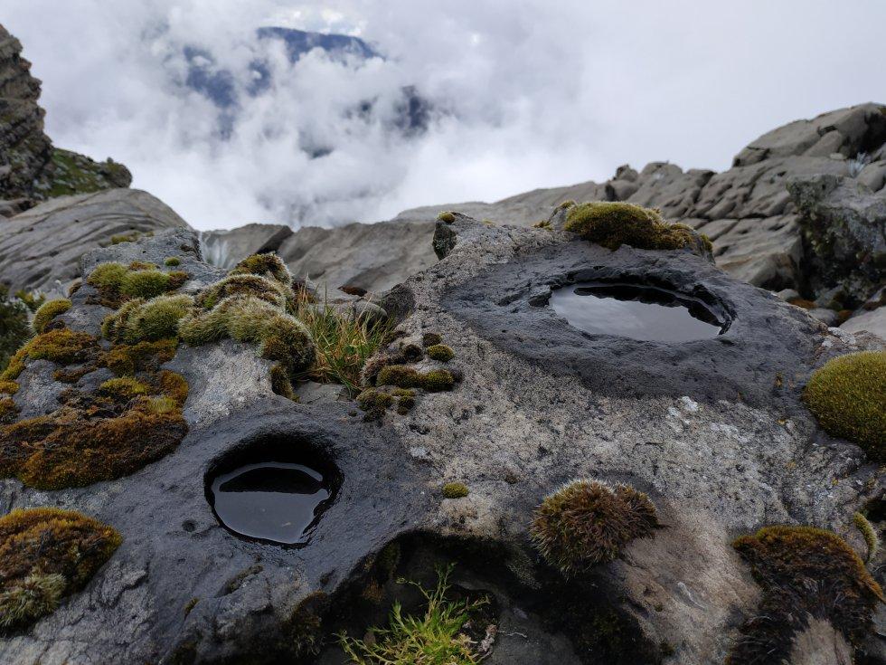 El agua está presente en todos los lugares del páramo del Almorzadero, incluso en las extrañas formas de las rocas que decoran las montañas de esta joya de la cordillera de los Andes