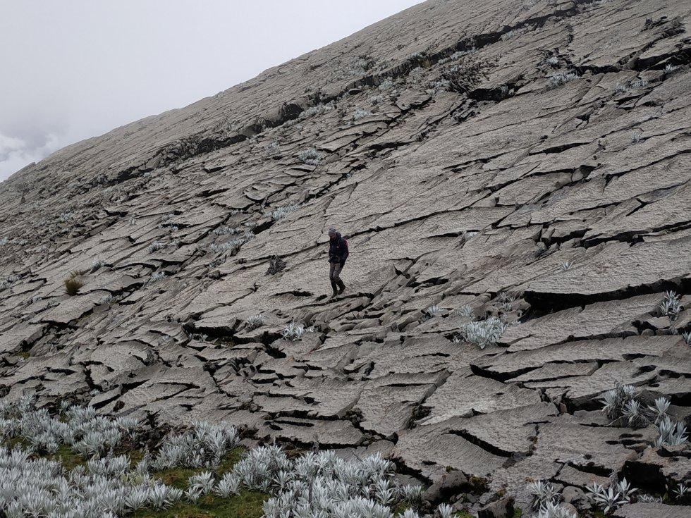 Almorzadero se caracteriza por albergar una gran cantidad de cumbres borrascosas, formaciones filosas que superan los 4000 metros de altura y las cuales son sobrevoladas por el enigmático cóndor de los Andes.