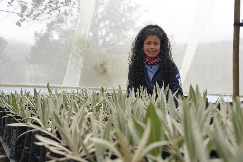 Erica Hernández nació en Machetá (Cundinamarca), donde se enamoró profundamente de las plantas. Estudió biología en la Universidad Nacional y hoy se encarga de cuidar y propagar la flora del páramo de Chingaza, en especial los frailejones