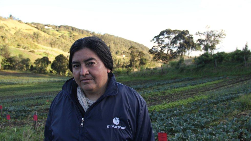 María Helena Pulido, una campesina de Subachoque, cultiva productos orgánicos libres de químicos que no afectan al páramo de Guerrero. Hace parte de las 11 familias de Asoarce, asociación que conserva el ecosistema por medio de una producción sostenible