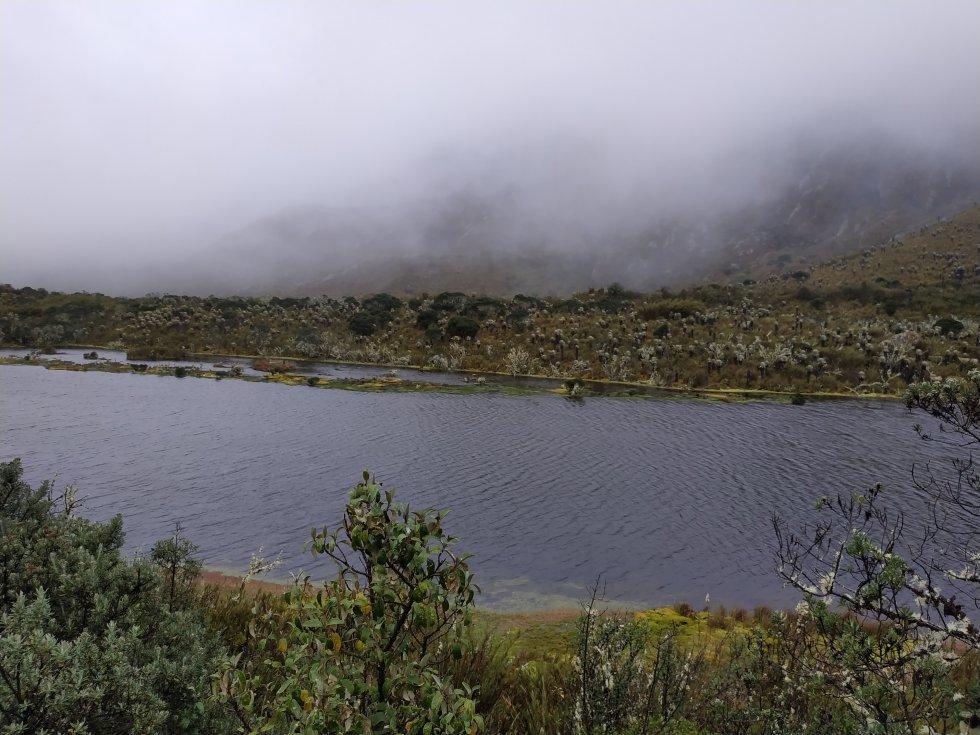 Sumapaz es fundamental para la provisión de agua, generación hidroeléctrica y actividades agropecuarias de los 25 municipios de Cundinamarca, Meta y Huila que están en sus dominios