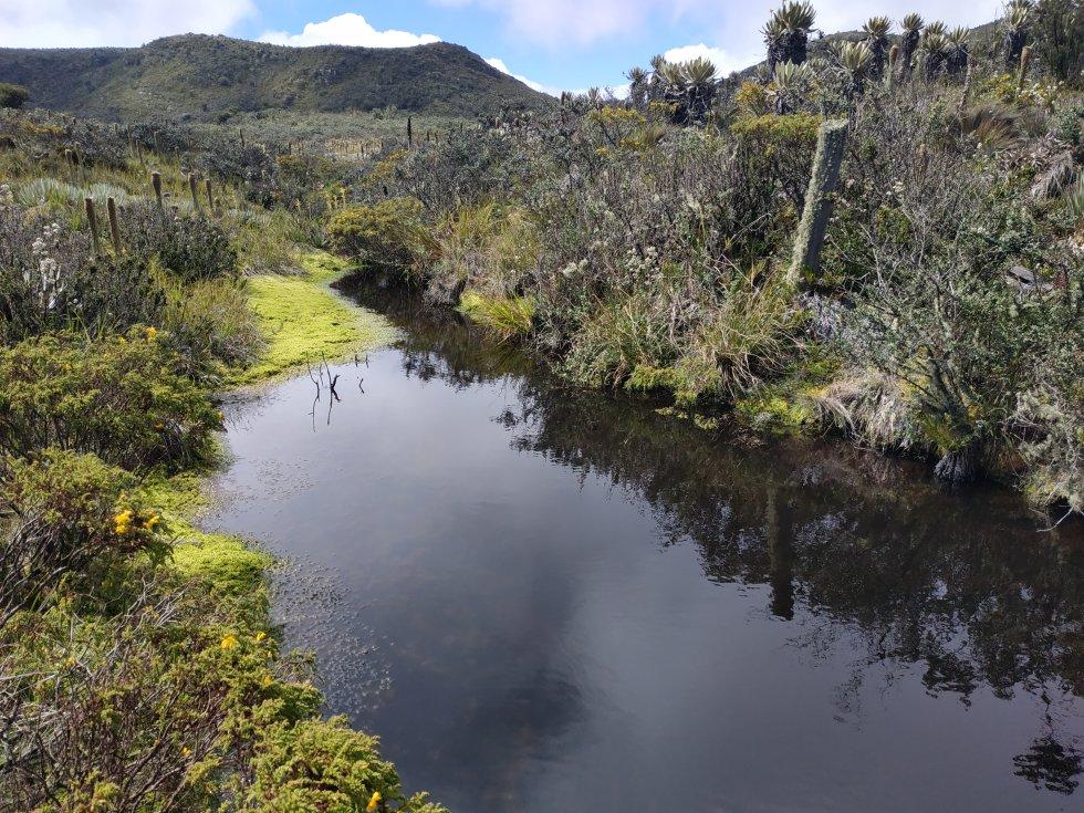 En el páramo de Guerrero nace el río Guandoque, la principal fuente que alimenta al embalse del Neusa de donde se surte de agua parte del norte de Bogotá