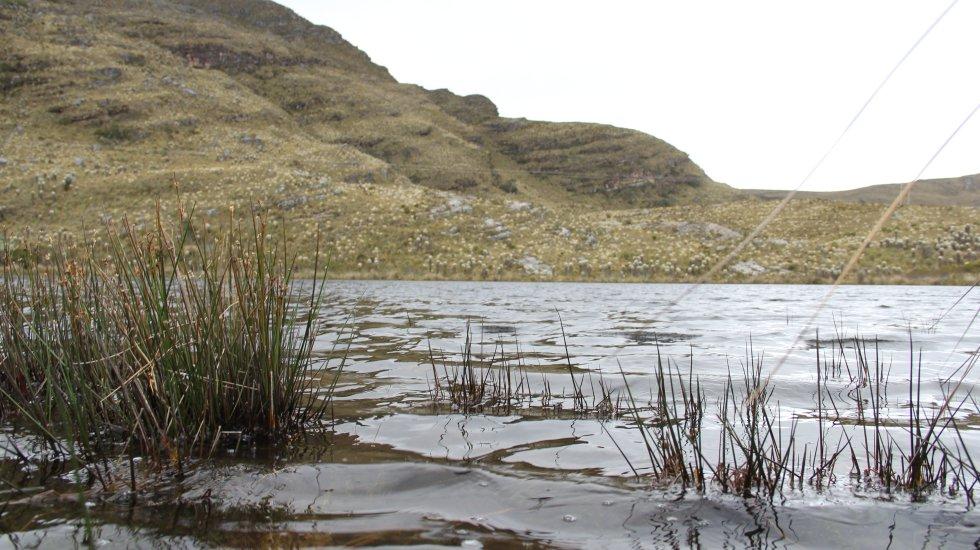 En la época prehispánica, las lagunas de Guantiva-La Rusia fueron epicentros de rituales sagrados de los muiscas