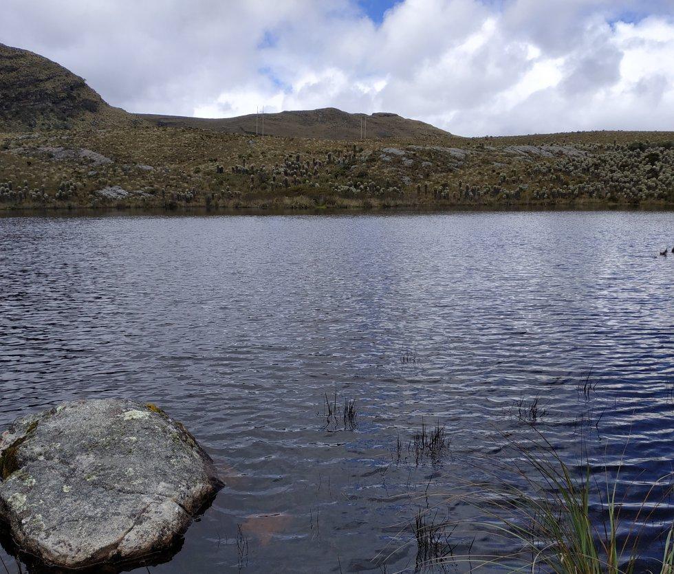 El agua del páramo es tan cristalina que incluso se pueden ver las piedras y musgos que están en el fondo de las lagunas