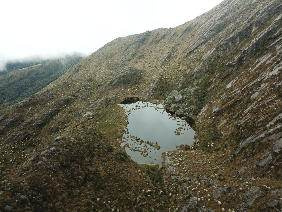 El páramo de Santurbán, que cubre 142.608 hectáreas de los santanderes, hace parte de tres de los titanes hídricos más importantes de Colombia: las cuencas del Catatumbo, Arauca y Magdalena medio.
