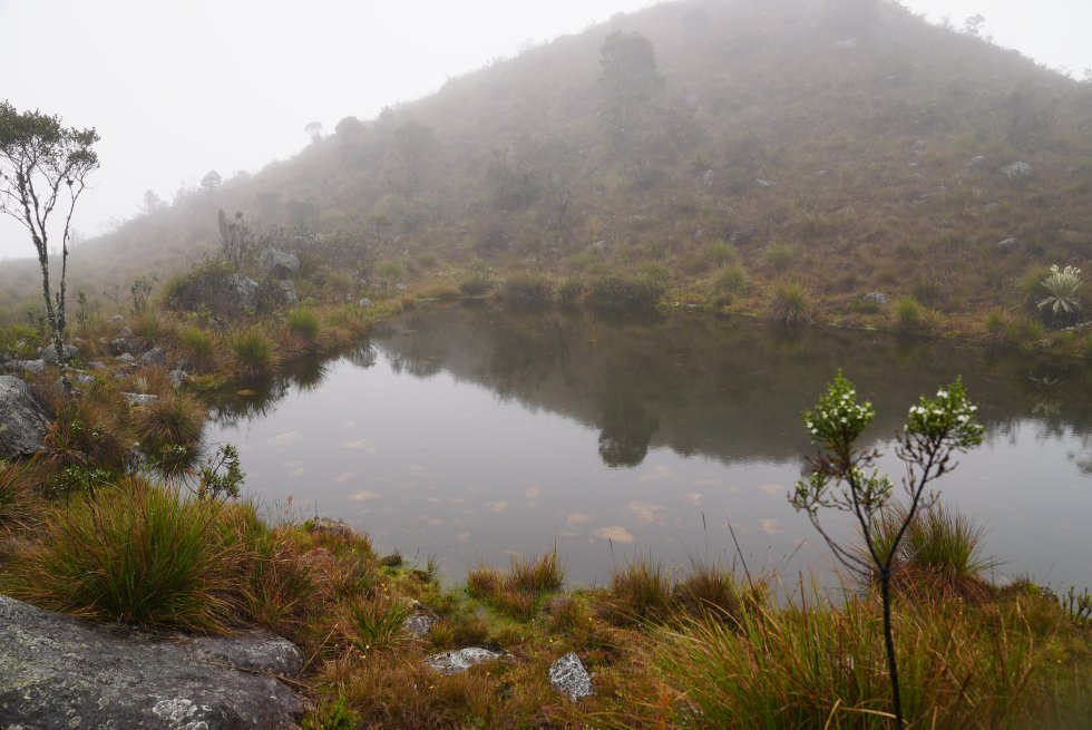 En lo más alto de las montañas del páramo de Santurbán hay cerca de 80 lagunas y humedales, cuerpos de agua que fueron sagrados para los indígenas de la región.