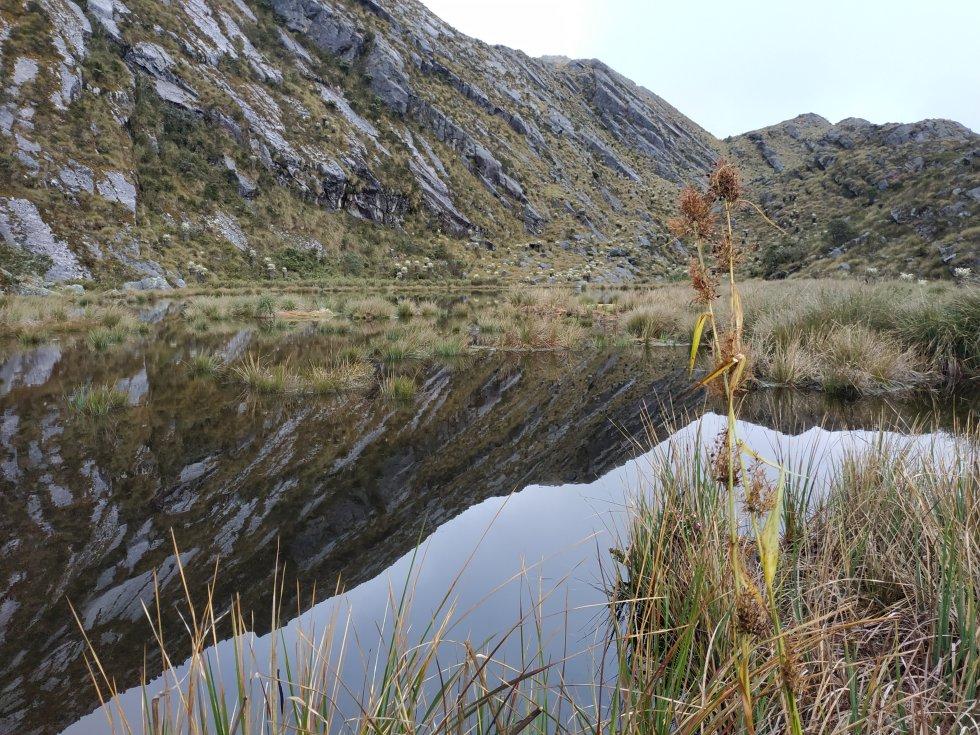 Las lagunas del Cornal, ubicadas en los municipios de Cácota y Silos, hacen parte de un área estratégica de conservación de Norte de Santander.