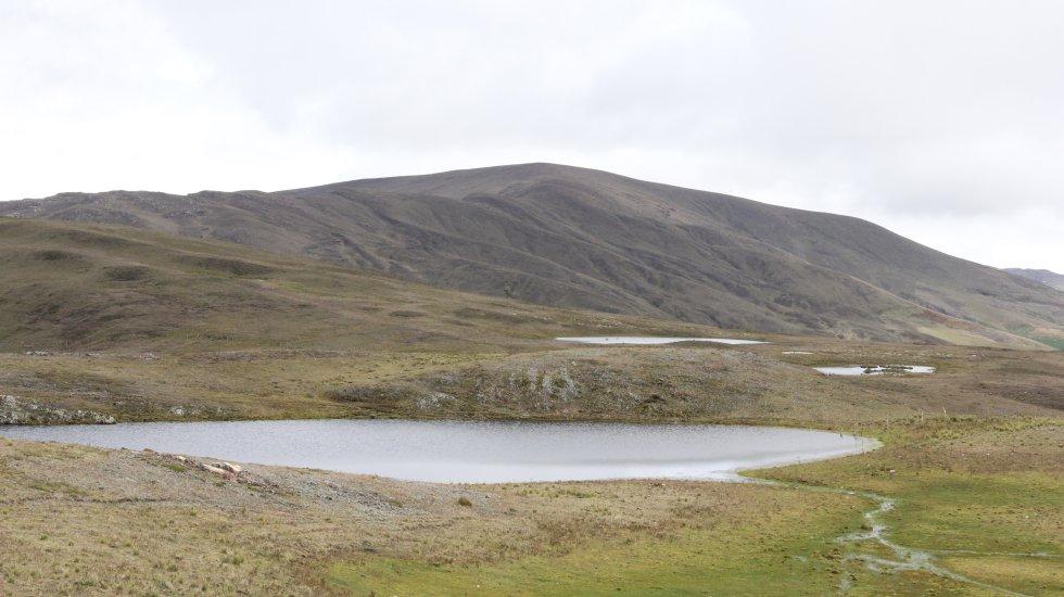 La laguna de Antalá, ubicada en el municipio de Silos, es el único sitio en el planeta donde sobrevive el frailejón más pequeño del mundo.