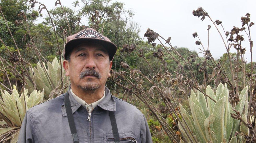 Roberto Sánchez, biólogo de la Universidad Nacional, es uno de los que más conoce las plantas del páramo de Santurbán, en especial las 18 especies de frailejones que alberga. En el Herbario Catatumbo-Sarare de la Universidad de Pamplona, el cual dirige, las estudia detalladamente, trabajo que le ha permitido descubrir nuevas especies.