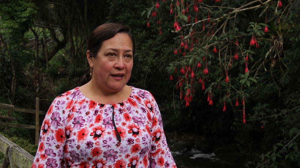 El Pino, la finca que tiene María Elisa Pabón en el municipio de Mutiscua, está atravesada por una quebrada de aguas cristalinas que es visitada por decenas de turistas. Allí cultiva productos orgánicos, conserva una gran cantidad de bosque altoandino y cocina los platos típicos de Norte de Santander.